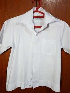 White Polo School Uniform