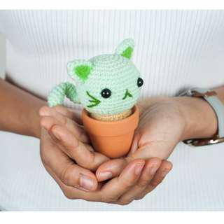 Nyani? The Catus Amigurumi Pattern & Kit