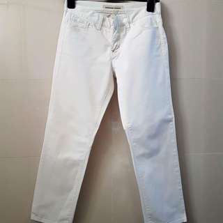 Giordano Khaki Pants (White)