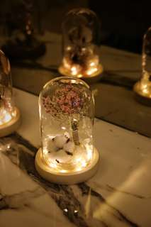 Pink Baby's Breath Bell Jar with Fairy Light