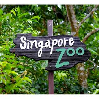 Singapore Zoo Tickets - Adult/Child