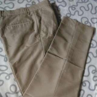 Celana Chino Bahan Pria