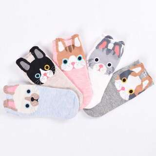 Puppy Low-cut Socks