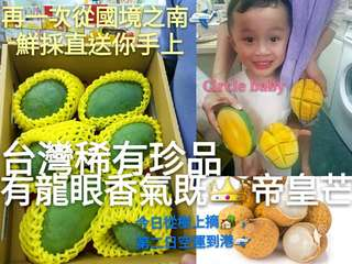 👑🌳台灣蜜甜黑香帝皇龍眼芒果🌳👑