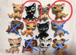 Littlest Pet Shop Cat & Dog