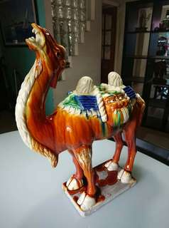 Camel porcelain display