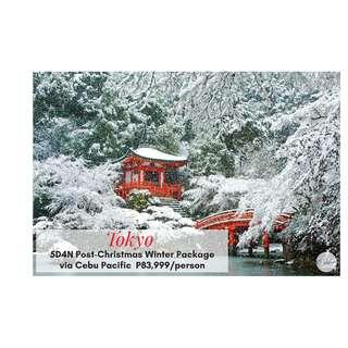 5D4N Tokyo Post-Christmas Winter Package via Cebu Pacific