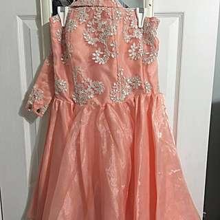 Organza Peach Coloured Gown Size S/M