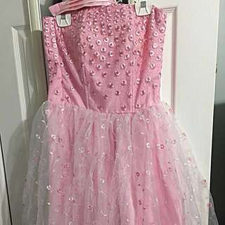 Organza Pink Gown Size S/M