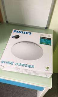 LED 燈