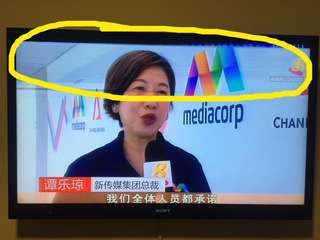 """Sony Bravia """"46 inch LCD digital color tv"""