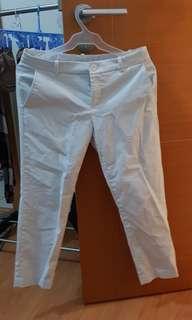 Women's low waist ankle pants