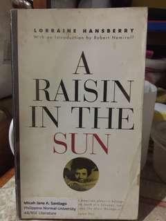 A Raisin in the Sun Book