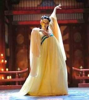 China Tang Dynasty Dance Dress唐朝服装