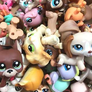 Littlest Pet Shop / LPS Clearance 🙆‍♀️