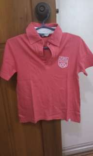 Bundle shirts for boys (2-4 years old)
