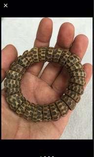{FS138} 野生越南沉香手链 Wild Grade Vietnam Agarwood Bracelet 4