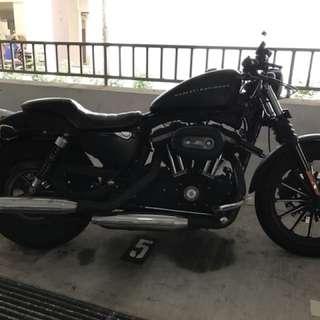 Harley Davidson Sportster 883 Iron Dec13
