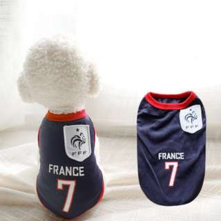 World cup fever! Flurry ball's world cup France jersey