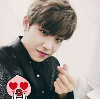 WTB Wanna One Woojin fansite goods
