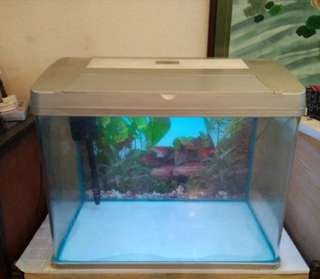 2 fts Fish Tank for Sale.