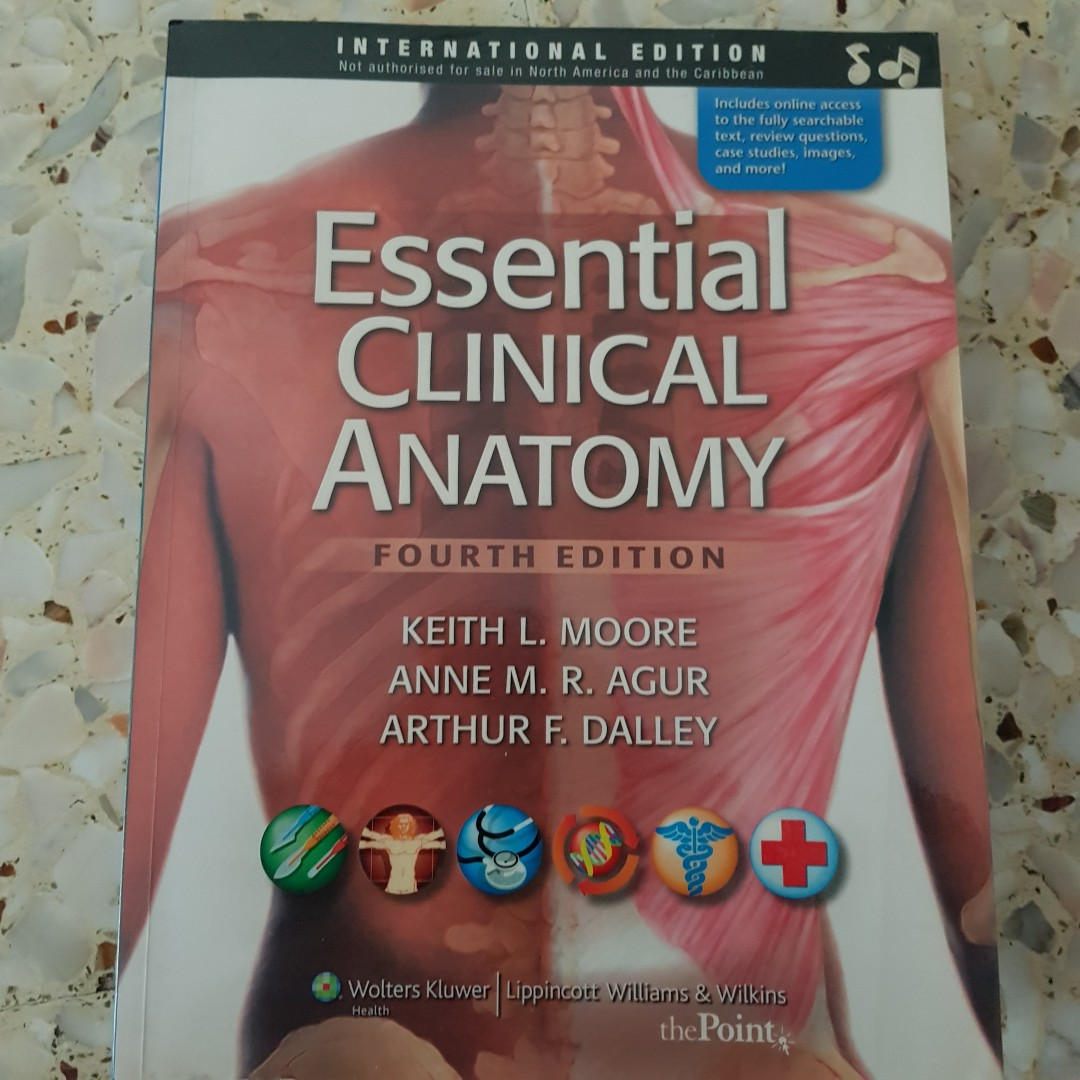 essential clinical anatomy, Books & Stationery, Textbooks ...