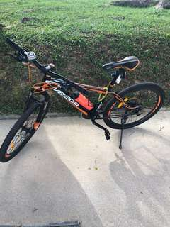 Mountain Bike (Veego Hardtail)