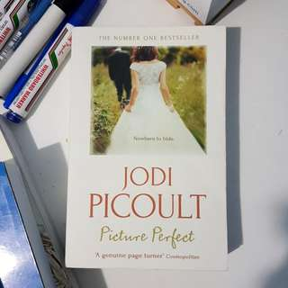 Jodi Picoult - Picture Perfect