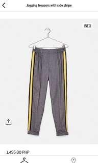 Bershka Gray Jogger Trouser