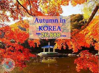 Autn in Korea 5 days 4 nights