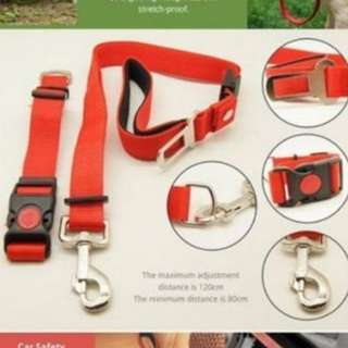 Multi-function rope essential for dog