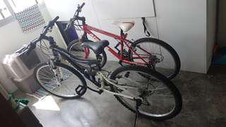 Aleoca bikes x2