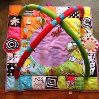 Baby Play Gym / play mat Taf Toys