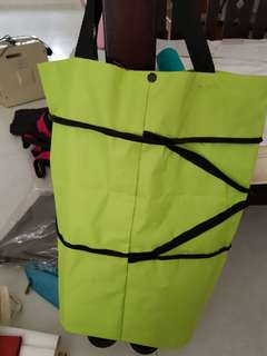 Extendable bag with wheels
