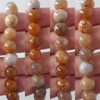 Exquisite Coral fossil bracelet (珊瑚玉手链). Bead size 10mm x 18 beads.