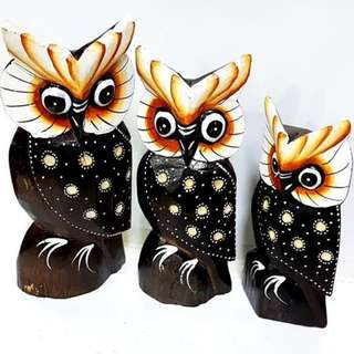 Set of 3 cute owl in quality Wood