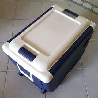 3-in-1 Picnic/Cooler Box
