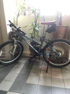 "GT 20"" mountain bike"