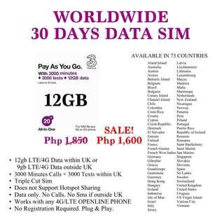 World wide travel data sim
