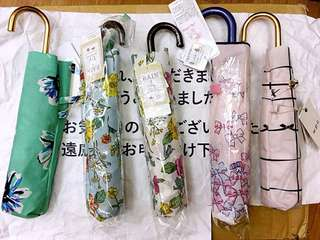 日本Lady款傘