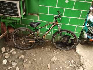 Stepdragon mountain bike