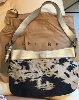 Celina handbag (70% new)
