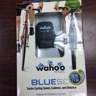 原裝正品Wahoo Fitness Blue SC自行車騎行運動跟蹤器