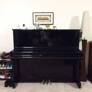 Sojin Black Piano 🎹🎼