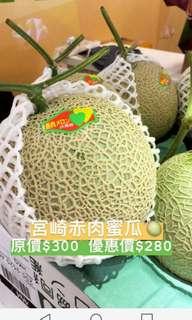 日本宮崎赤肉密瓜