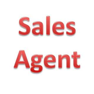 Sales Agent for Web Solutions