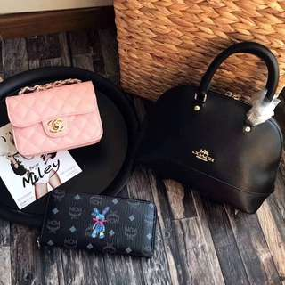 3 IN 1 (Coach & Chanel & MCM)