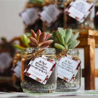 Wedding Favors - Succulent / Cactus in a Jar (Mini Terrarium)