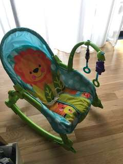 Newborn to toddler portable rocker