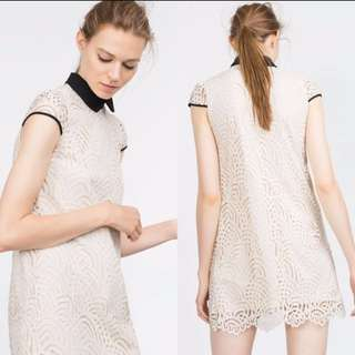 Zara Peter Pan Collar Guipure Dress